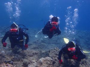 2013.07.28 真栄田岬 青の洞窟 体験ダイビング