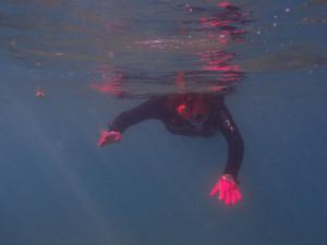2013.09.05 奥武島 体験ダイビング