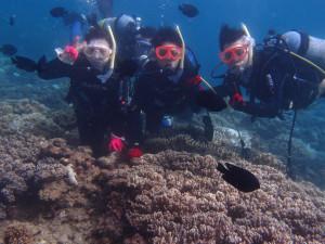 2013.09.13 砂辺 体験ダイビング