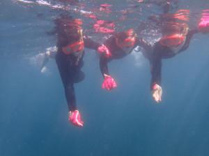 2014.08.25 砂辺ビーチ 体験ダイビング