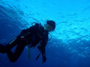 2014.11.14 慶良間ボート ファン&体験ダイビング