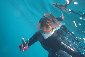 2015.07.18 砂辺ビーチ 体験ダイビング&付き添いファンダイビング