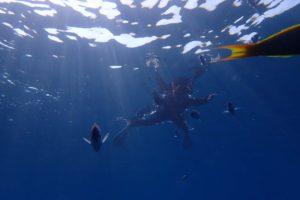 2016.07.28 チービシボート スノーケル&体験ダイビング&付き添いファンダイビング