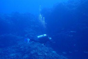 2016.12.31 大浦湾ボート ファンダイビング