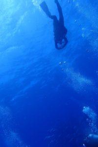 2017.06.29 粟国島遠征ボート ファンダイビング