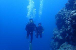 http://www.kaifu-divers.com/?p=6331