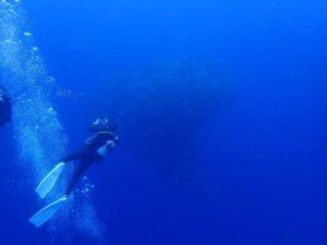2021.06.14 粟国遠征ボート ファンダイビング
